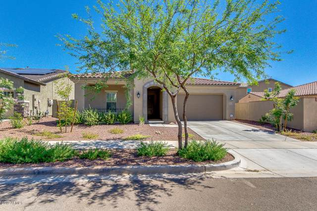 20438 W Park Meadows Drive, Buckeye, AZ 85396 (MLS #6028038) :: RE/MAX Desert Showcase