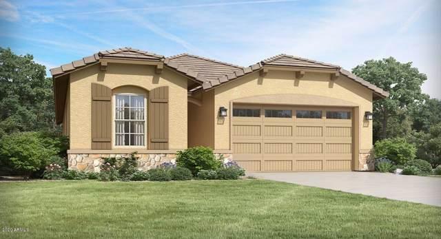 12800 N 145TH Drive, Surprise, AZ 85379 (MLS #6028081) :: Brett Tanner Home Selling Team