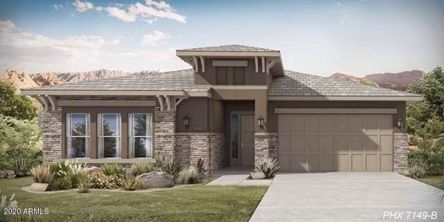 12238 W Creosote Drive, Peoria, AZ 85383 (MLS #6028197) :: Nate Martinez Team