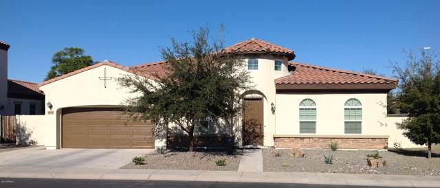 4224 E Mead Way, Chandler, AZ 85249 (MLS #6028265) :: Keller Williams Realty Phoenix