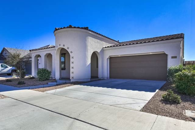 22463 E Camina Buena Vista, Queen Creek, AZ 85142 (MLS #6028294) :: The Bill and Cindy Flowers Team