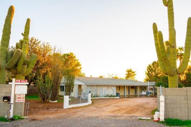 559 E Lynwood Street, Mesa, AZ 85203 (MLS #6028367) :: The Kenny Klaus Team