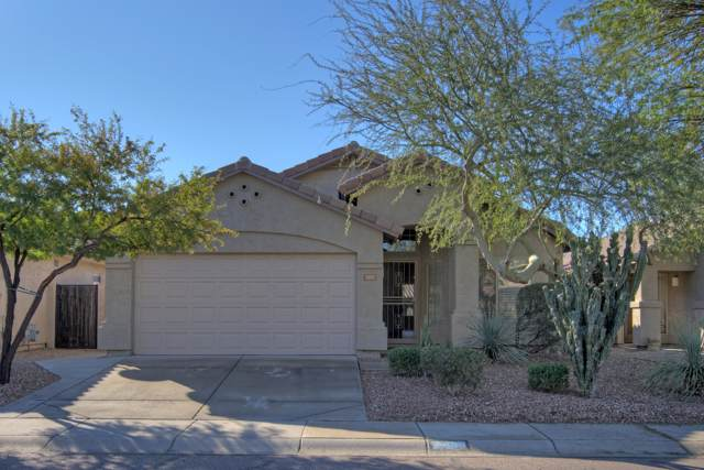 4323 E Tether Trail, Phoenix, AZ 85050 (MLS #6028374) :: Brett Tanner Home Selling Team