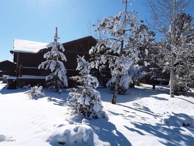2680 Palomino Trail, Overgaard, AZ 85933 (MLS #6028382) :: Brett Tanner Home Selling Team