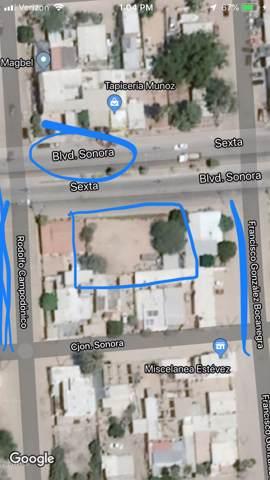 Lote 14 W Bldv. Sonora / Ave. Gonzalez B Boulevard, Outside of USA, AZ 00000 (MLS #6028450) :: The W Group