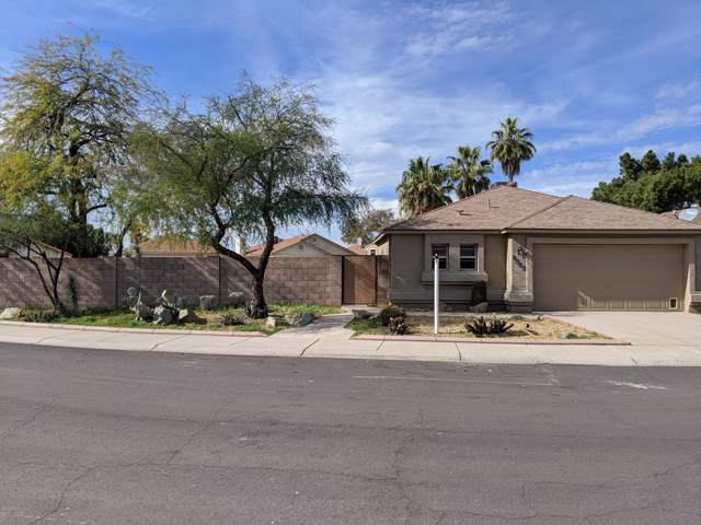 8562 N 108TH Drive, Peoria, AZ 85345 (MLS #6028488) :: The Helping Hands Team