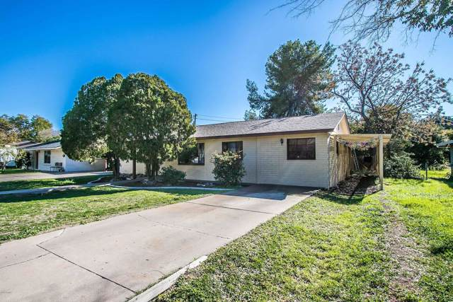 1613 E Cedar Street, Tempe, AZ 85281 (MLS #6028501) :: The Helping Hands Team