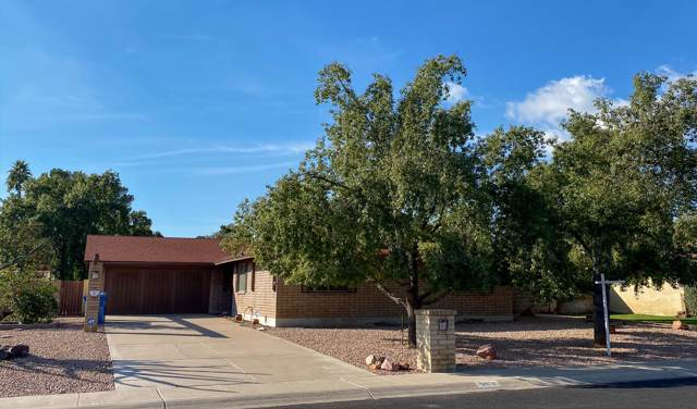 8512 N 16TH Avenue, Phoenix, AZ 85021 (MLS #6028523) :: The Everest Team at eXp Realty