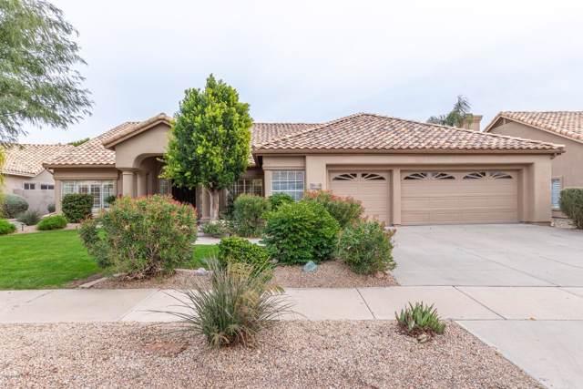 3701 E Park Avenue, Phoenix, AZ 85044 (MLS #6028573) :: Dijkstra & Co.