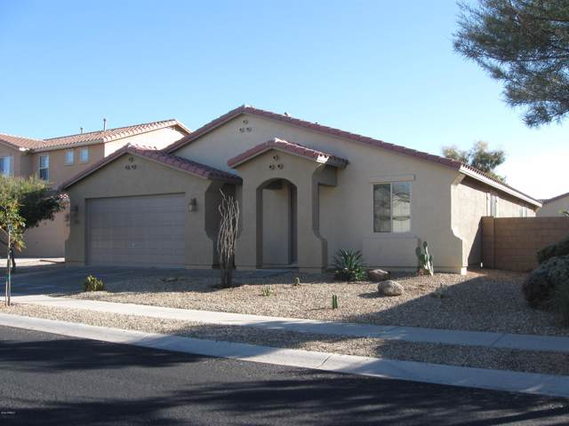 17375 W Buckhorn Trail, Surprise, AZ 85387 (MLS #6028647) :: The Laughton Team