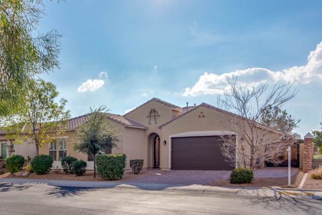 6756 S Jacqueline Way, Gilbert, AZ 85298 (MLS #6028666) :: The Kenny Klaus Team