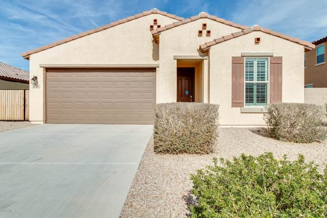 1744 E Cielo Azul Way, San Tan Valley, AZ 85140 (MLS #6028698) :: The Helping Hands Team