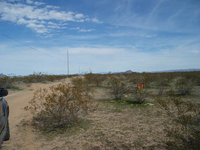 30502 W Pinnacle Vista Drive, Unincorporated County, AZ 85361 (MLS #6028708) :: The Mahoney Group