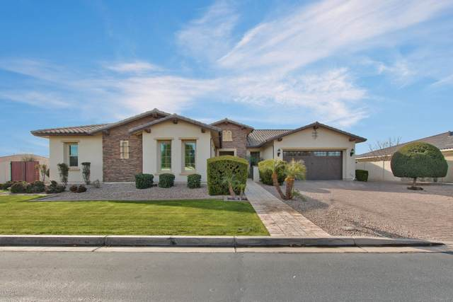 20137 E Via Del Palo, Queen Creek, AZ 85142 (MLS #6028741) :: Brett Tanner Home Selling Team