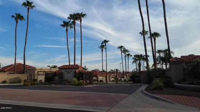 10243 N 103RD Street, Scottsdale, AZ 85258 (MLS #6028756) :: Brett Tanner Home Selling Team