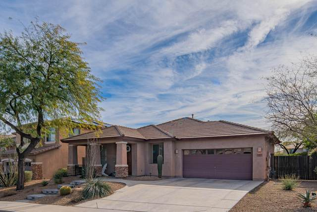 8493 W Desert Elm Lane, Peoria, AZ 85383 (MLS #6028757) :: The Laughton Team