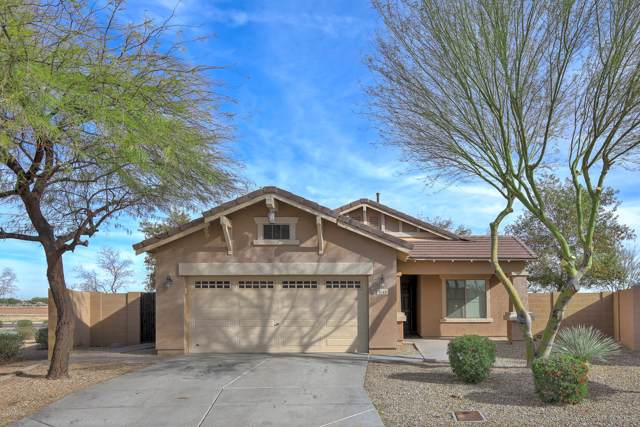1645 S 169Th Drive, Goodyear, AZ 85338 (MLS #6028919) :: Dave Fernandez Team | HomeSmart