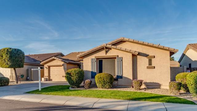 18166 W Tasha Drive, Surprise, AZ 85388 (MLS #6029007) :: Kortright Group - West USA Realty
