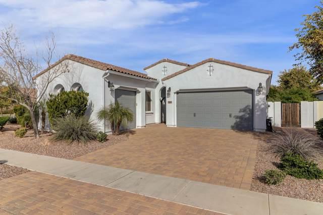 2896 E Maplewood Street, Gilbert, AZ 85297 (MLS #6029044) :: The Laughton Team