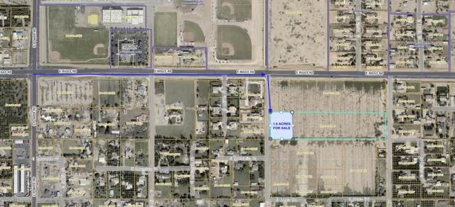 xxxxx S Mandarin Drive, Queen Creek, AZ 85142 (MLS #6029060) :: REMAX Professionals