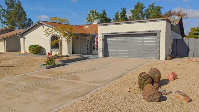 4414 E Ludlow Drive, Phoenix, AZ 85032 (MLS #6029067) :: Dave Fernandez Team | HomeSmart