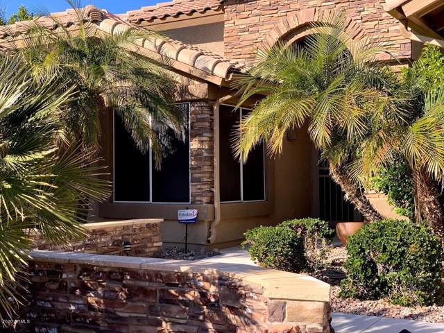 8672 W Escuda Drive, Peoria, AZ 85382 (MLS #6029084) :: My Home Group