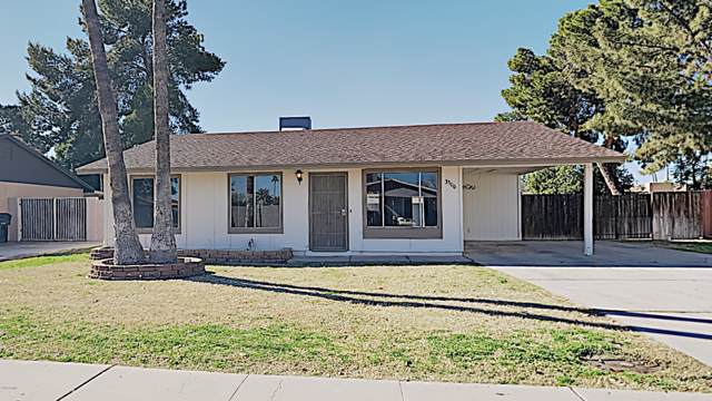 3300 N El Dorado Drive, Chandler, AZ 85224 (MLS #6029145) :: Brett Tanner Home Selling Team