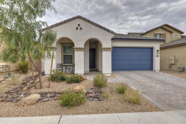 18245 N 66TH Way, Phoenix, AZ 85054 (MLS #6029146) :: REMAX Professionals