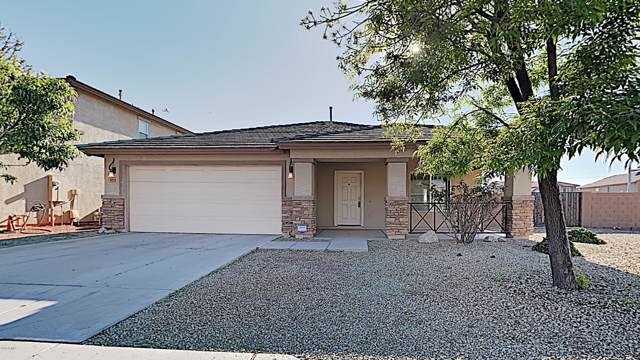 4119 S 73RD Drive, Phoenix, AZ 85043 (MLS #6029161) :: REMAX Professionals