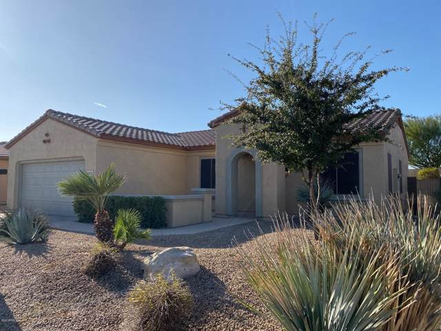 18436 N Summerbreeze Way, Surprise, AZ 85374 (MLS #6029177) :: Brett Tanner Home Selling Team