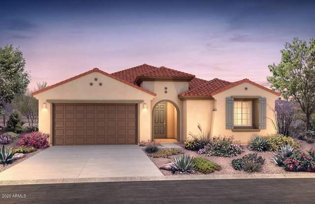 533 S 201ST Avenue, Buckeye, AZ 85326 (MLS #6029213) :: Selling AZ Homes Team
