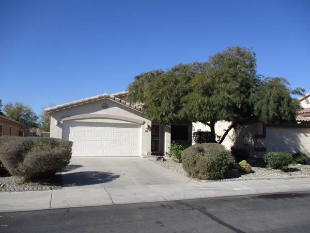 13914 N 132ND Lane, Surprise, AZ 85379 (MLS #6029217) :: Brett Tanner Home Selling Team