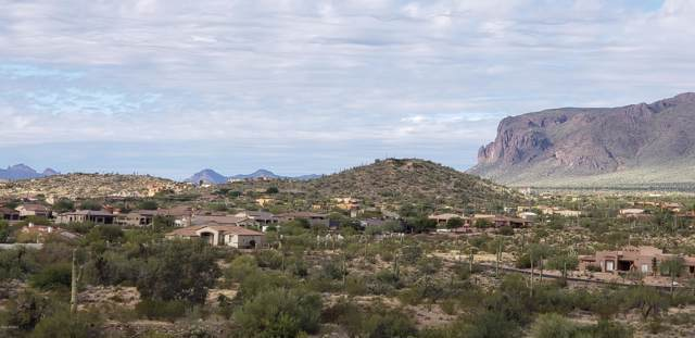 0 S Kings Ranch Road, Gold Canyon, AZ 85118 (MLS #6029233) :: Midland Real Estate Alliance