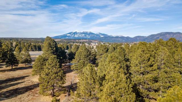 3451 S Lake Mary Road, Flagstaff, AZ 86005 (MLS #6029326) :: CC & Co. Real Estate Team
