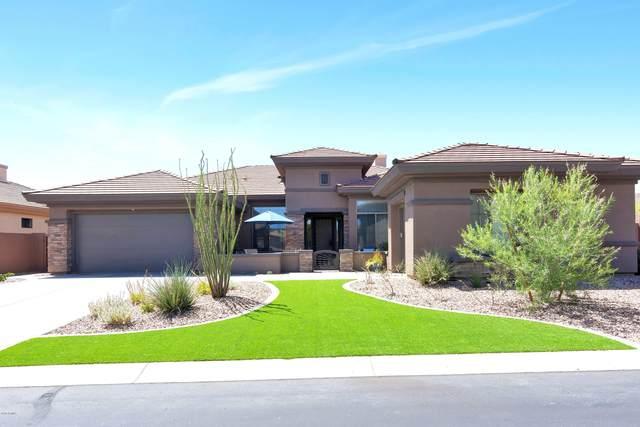 40930 N Lambert Trail, Phoenix, AZ 85086 (MLS #6029356) :: Revelation Real Estate