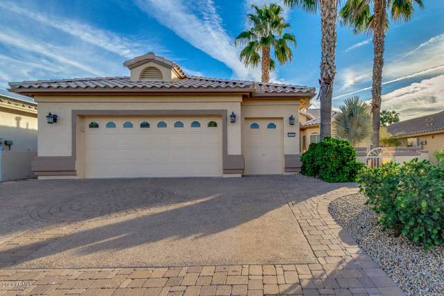 2623 N 162ND Avenue, Goodyear, AZ 85395 (MLS #6029403) :: Selling AZ Homes Team