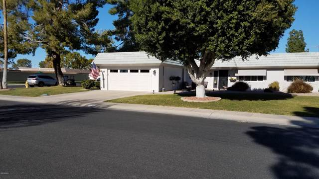 10248 W Pineaire Drive, Sun City, AZ 85351 (MLS #6029455) :: The Everest Team at eXp Realty
