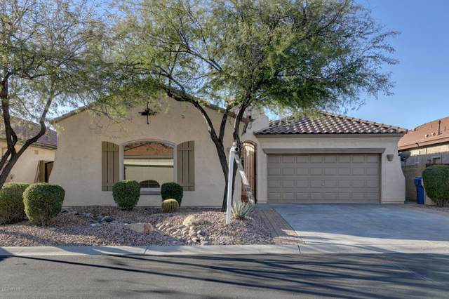 3345 W Ravina Lane, Anthem, AZ 85086 (MLS #6029485) :: Maison DeBlanc Real Estate