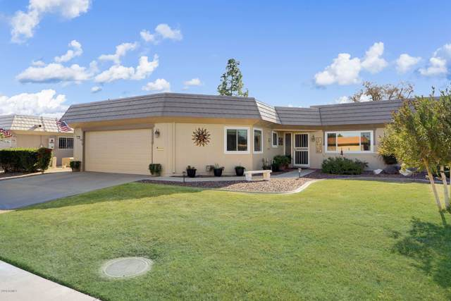 10171 W Pineaire Drive, Sun City, AZ 85351 (MLS #6029601) :: The Everest Team at eXp Realty
