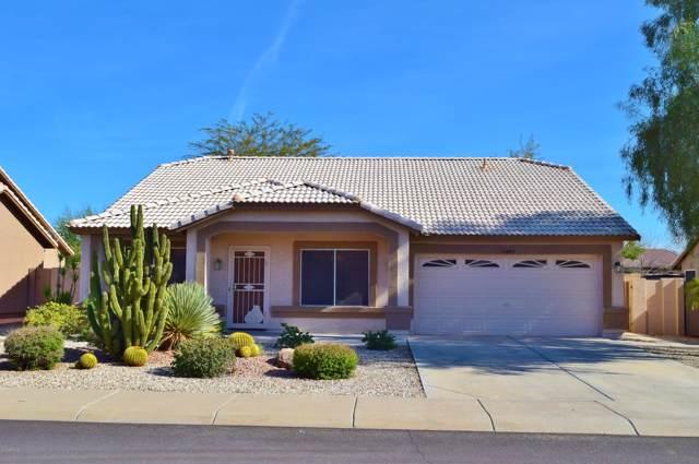 10885 W Oraibi Drive, Sun City, AZ 85373 (MLS #6029611) :: Dave Fernandez Team   HomeSmart