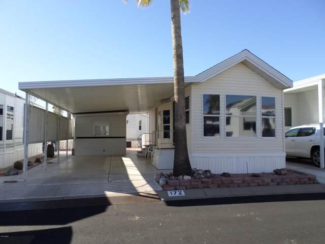 172 S Limestone Drive, Apache Junction, AZ 85119 (MLS #6029717) :: Nate Martinez Team