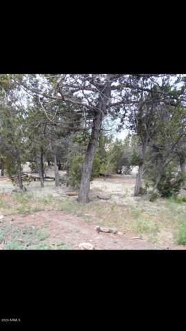 3385 Mogollon Drive, Overgaard, AZ 85933 (MLS #6029722) :: Brett Tanner Home Selling Team