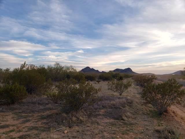 47XXX N Eagle Eye Avenue, Aguila, AZ 85320 (MLS #6029753) :: Kortright Group - West USA Realty