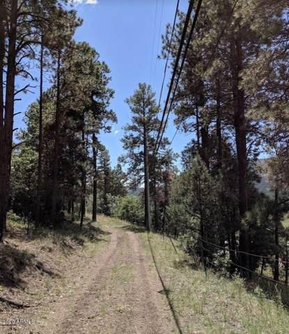 42491 Coronado Trail Trail, Alpine, AZ 85920 (MLS #6029761) :: Revelation Real Estate