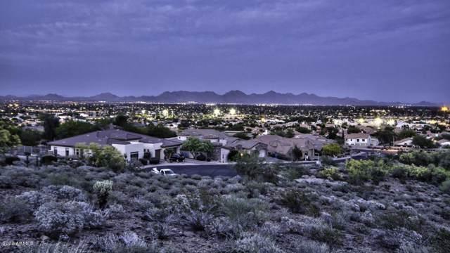 2703 E Friess Drive, Phoenix, AZ 85032 (MLS #6029802) :: The C4 Group