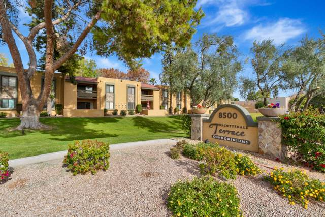 8500 E Indian School Road #229, Scottsdale, AZ 85251 (MLS #6029815) :: The C4 Group