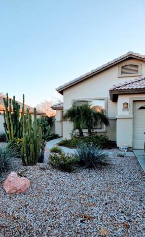 4045 E Libra Avenue, Gilbert, AZ 85234 (MLS #6029847) :: Openshaw Real Estate Group in partnership with The Jesse Herfel Real Estate Group
