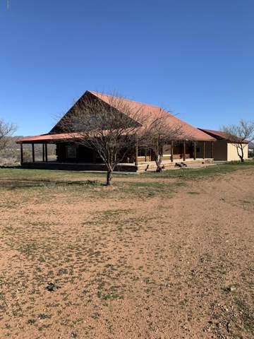 46101 N Hwy 188, Tonto Basin, AZ 85553 (MLS #6029894) :: Riddle Realty Group - Keller Williams Arizona Realty