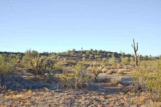 0 W River Road, Wittmann, AZ 85361 (MLS #6029940) :: Homehelper Consultants
