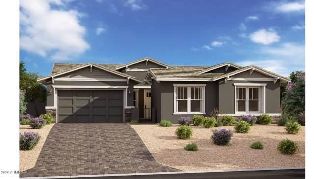 22621 E Camacho Road, Queen Creek, AZ 85142 (MLS #6030012) :: Revelation Real Estate